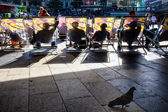 Restful art and a one-legged pigeon