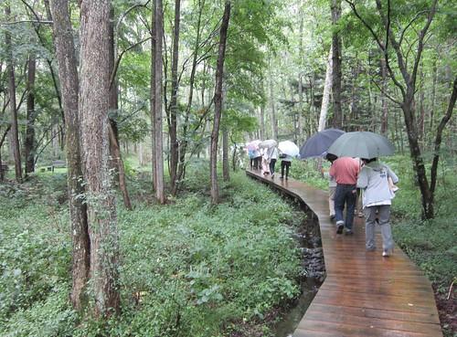 竜神池周辺を散策 2012年9月19日 by Poran111