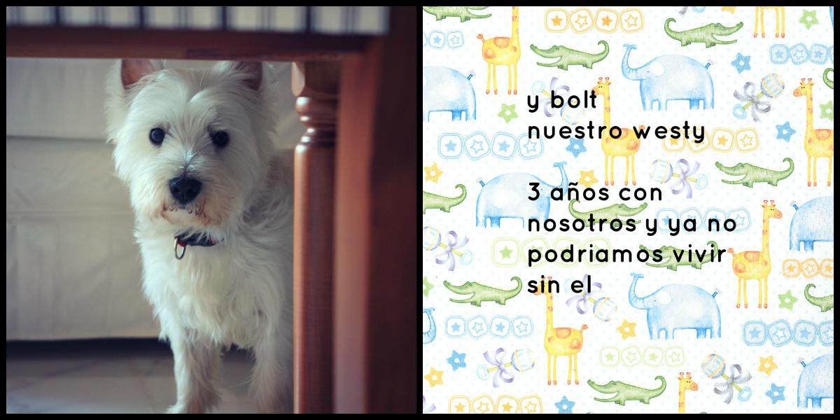 boltblog3