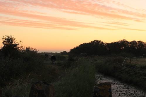 Sunset & Sunrise practice