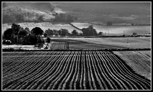 uk blackandwhite bw field rural landscape scotland village angus farm country farming land forfar 1001nights 2012 ploughed kirkton platinumpeaceaward 1001nightsmagiccity mygearandme mygearandmepremium kinettles