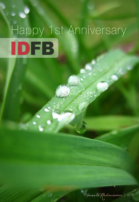 IDFB 1st ANNIVERSARY