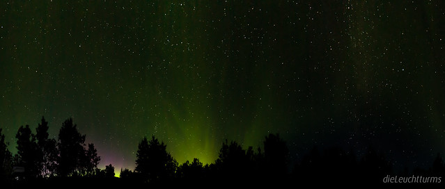Northern Lights above Tatchun Creek Campground