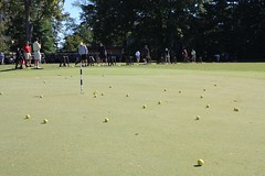 lawn game, sport venue, sports, recreation, ball game,