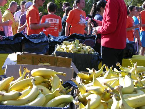 2012 Big Gay Race banana ends