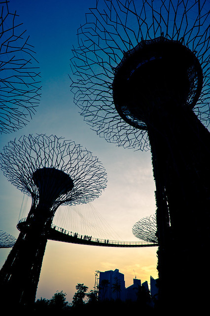 Supertree Silhouettes (Gardens by the Bay, Singapore)