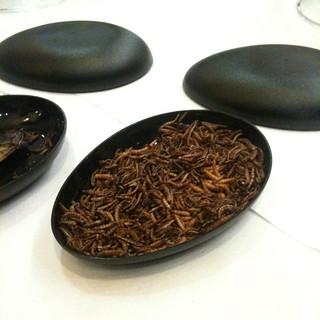 larve di tarme