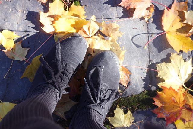 hejregina skor