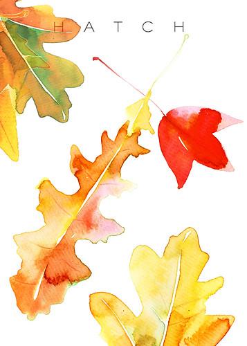 leaves postcard4