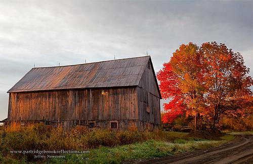 autumn fall barn sunrise maple vermont irasburg