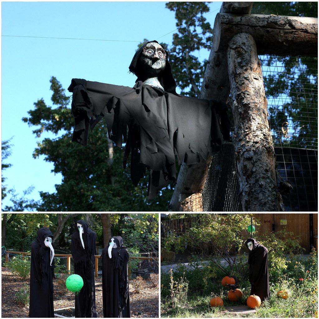 aviary ghouls