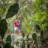 Canoodling in the cacti.  Monica and Ian taking a stroll around #fortzacharytaylorstatepark.  #engagementphotos #destinationwedding #engagementphotographer #destinationengagement #cactus #cacti #keywestphotographer #destinationphotographer #keywestwedding
