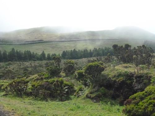 pico-norte 4