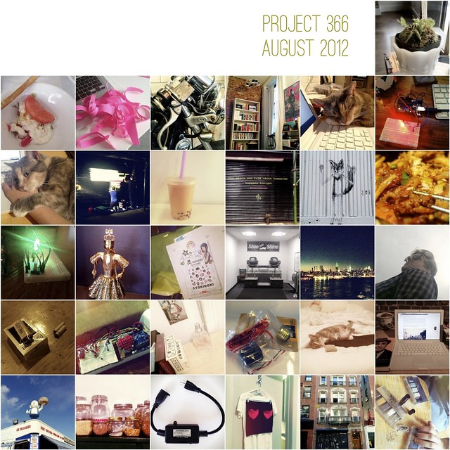 project366-august