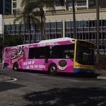 Brisbane Transport 1309