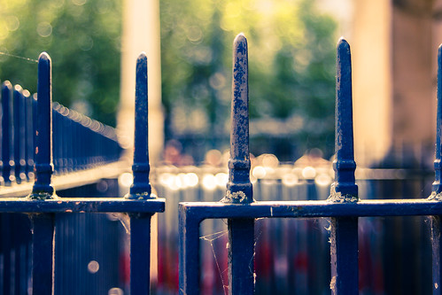 day 347 - beyond these gates lies bokeh