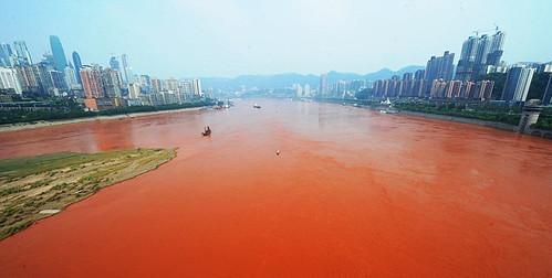 Река Янцзы покраснела - власти в тупике (фото)