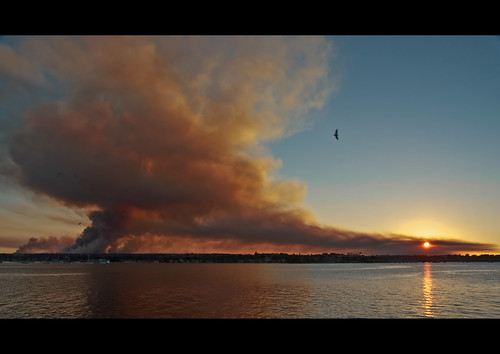 burnoff hazardreduction royalnationalpark loftus thesutherlandshire sunset pregamesweepwinner georgesriver gamewinner herowinner matchpointwinner mpt204 gamex2winner gamex3winner pregameduelwinner favescontestwinner favescontestfavored smoke fromabridge river photojournalism thumbsup challengeyouwinner cy2