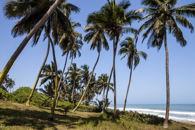 the background of the gold coast ghana Unlike most editing & proofreading services, we edit for everything: grammar, spelling, punctuation, idea flow, sentence structure, & more get started now.