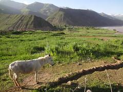 Montanhas na aldeia de Tavildara no Tajiquistão