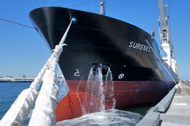Bow View of Surenes