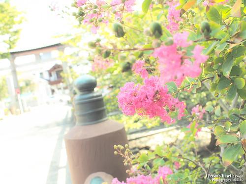 2012_Summer_Kansai_Japan_Day6-63