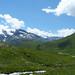 Alpine View (John East)