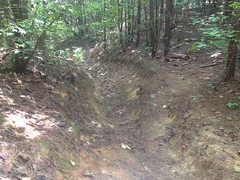 Wretched Trail