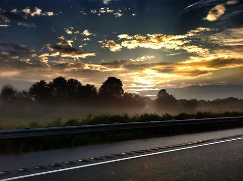 fog sunrise foggy