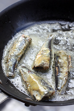 sardines in Bordier butter