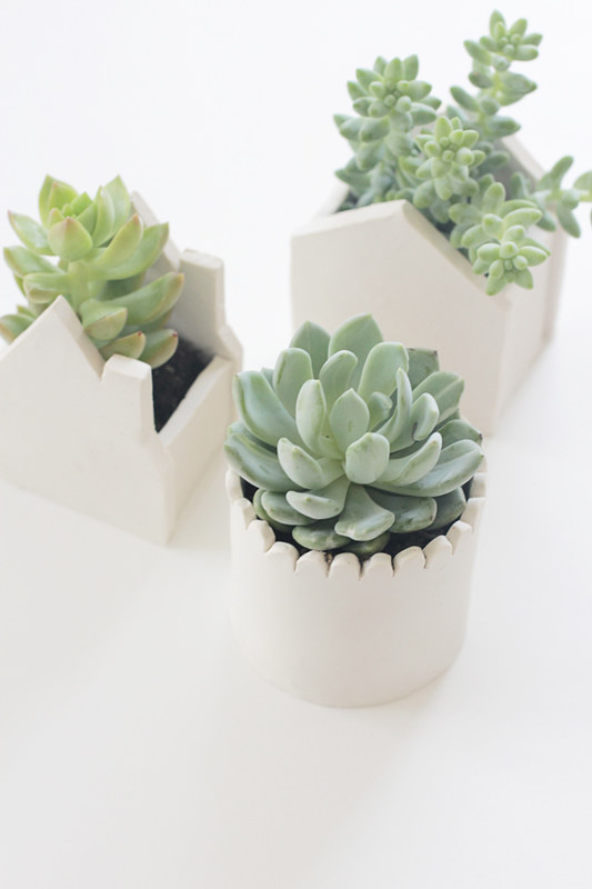 DIY SUCCULENT POT