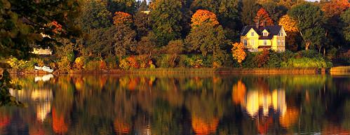 morning autumn trees lake reflection fall colors leaves october sweden stockholm s foliage sverige