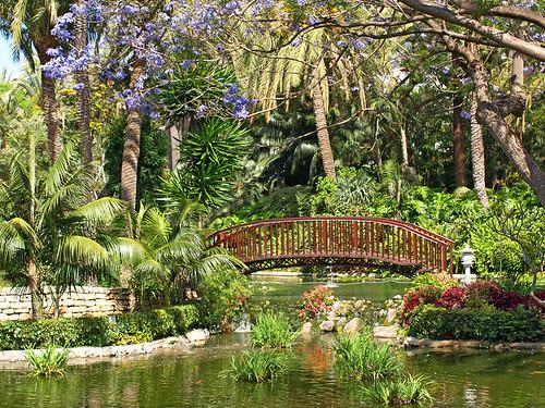 Santa cruz tenerife botanical gardens fasci garden for Jardin botanico de tenerife