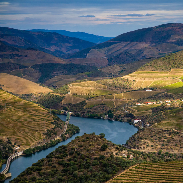 Love this photo from Vintage in the Douro 2012 #douro12 @catavino, ivdp_ip [pic] --