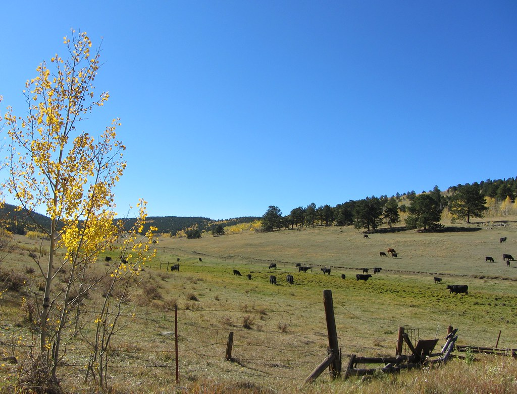 Quartz Valley Colorado Tripcarta