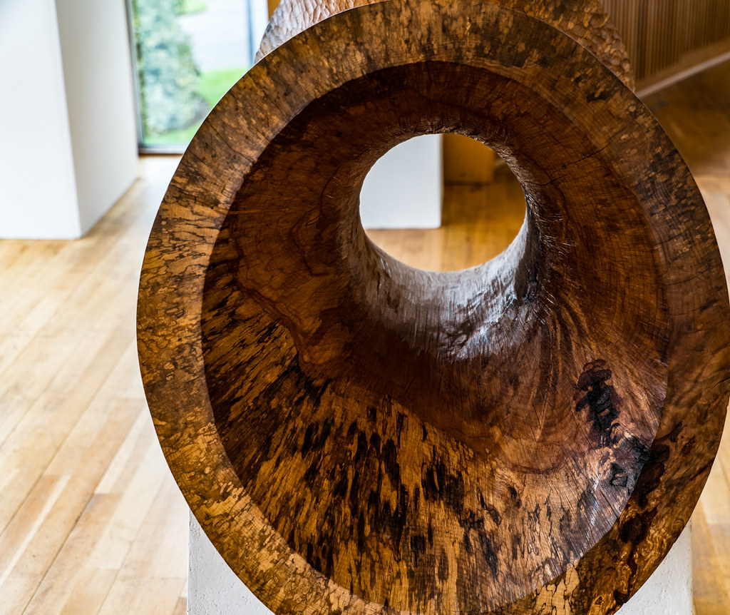 BEECH HOOP BY KEN DREW [SCULPTURE IN CONTEXT 2016]-120716