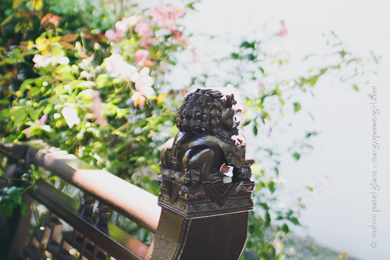 lan su chinese garden 7