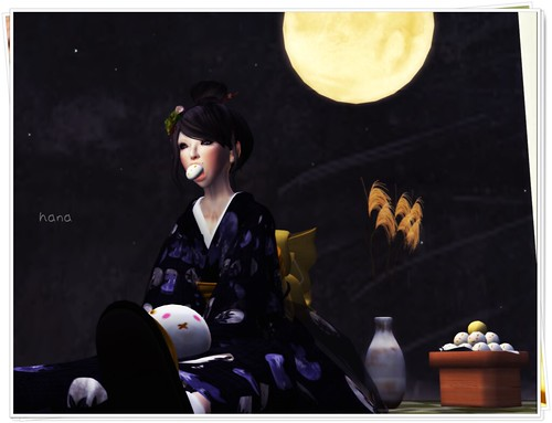 Viewing the moon。