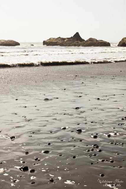 onp_beach20