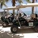 Boaz Golf Cart Rentals 5