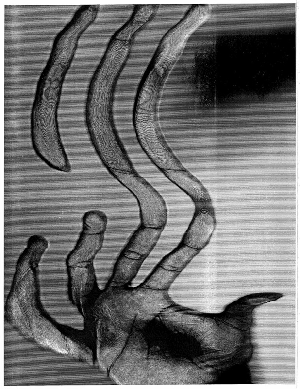 Scanned Hand