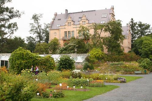 Kaisaniemi Park - botanical garden