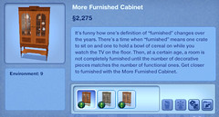 More Furnished Cabinet
