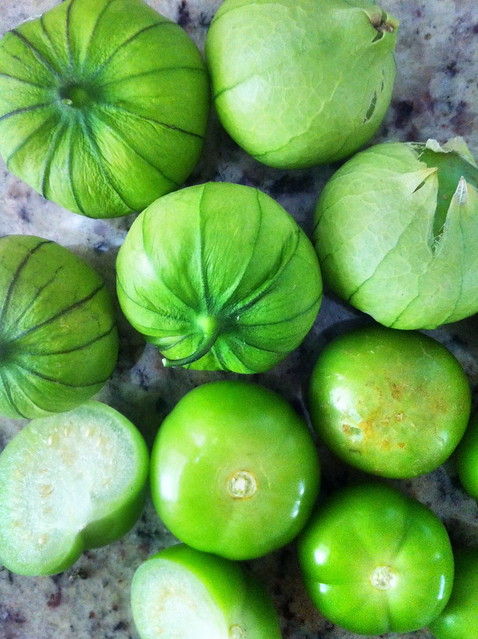 Tomatillo harvest