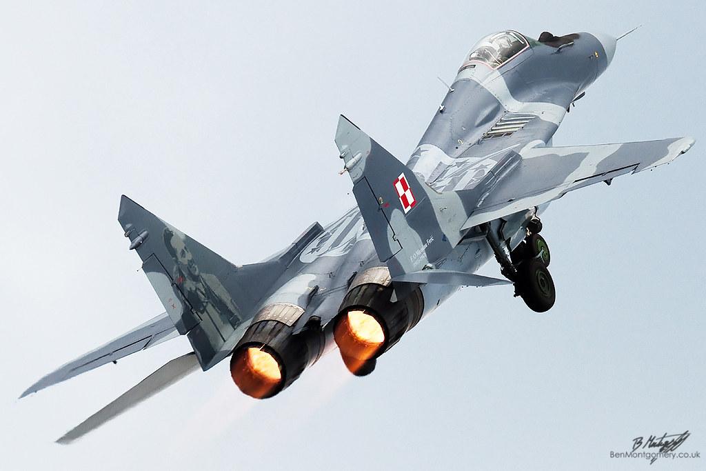 Les Forces Armées Polonaises/Polish Armed Forces - Page 5 7977574799_288c51cd0a_b