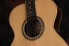 Guitar #6  (2 of 6)