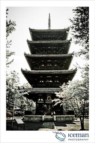 Ninna-Ji Temple 414