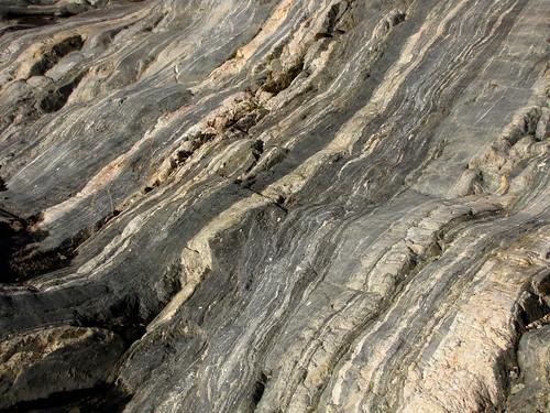 rock moss strata metamorphic