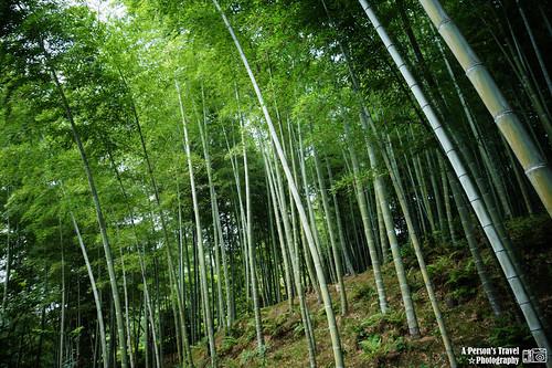 2012_Summer_Kansai_Japan_Day4-54