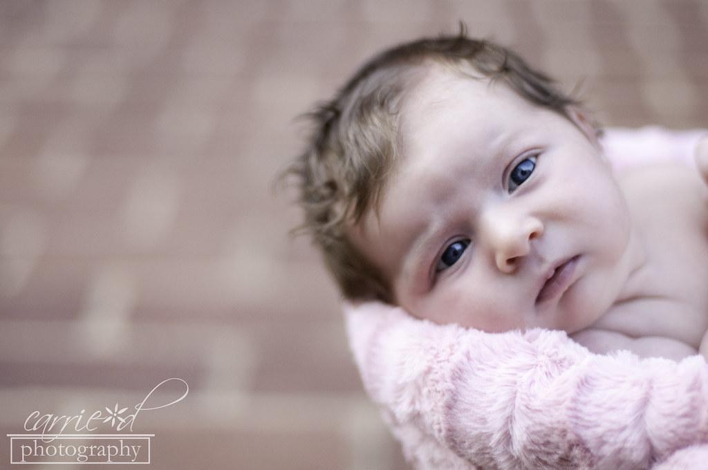 Washington DC Newborn Photographer - Washington DC Family Photographer - Washington DC Child Photographer - Shelby 9-6-2012 (114 of 374)